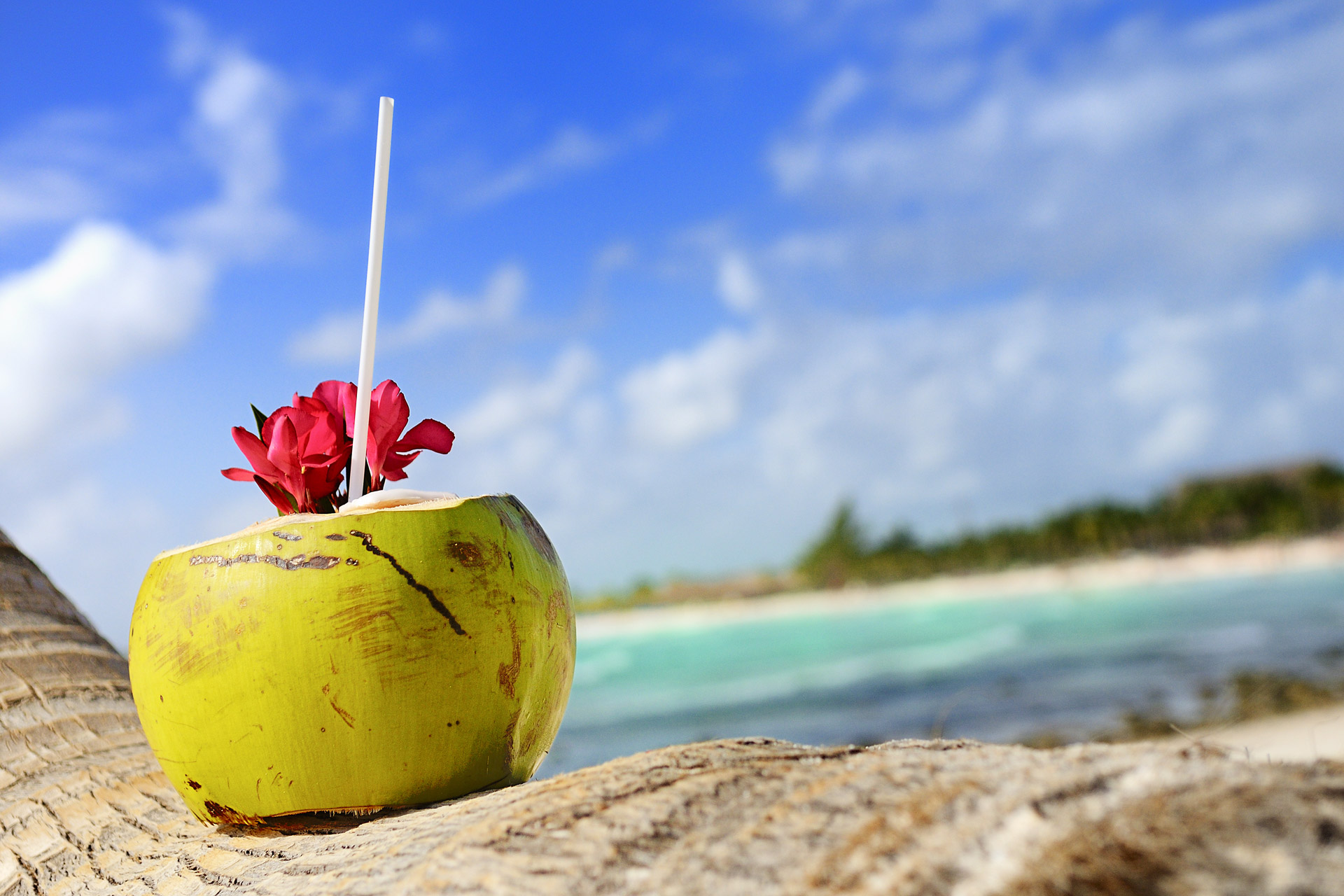 Аюрведични съвети за по-свежо лято