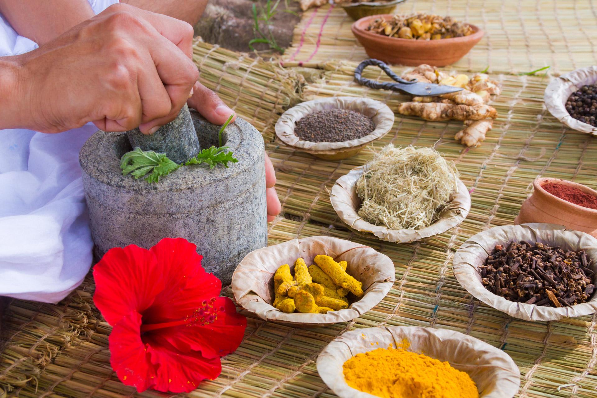 Как се приемат и комбинират лечебните субстанции в Аюрведа?