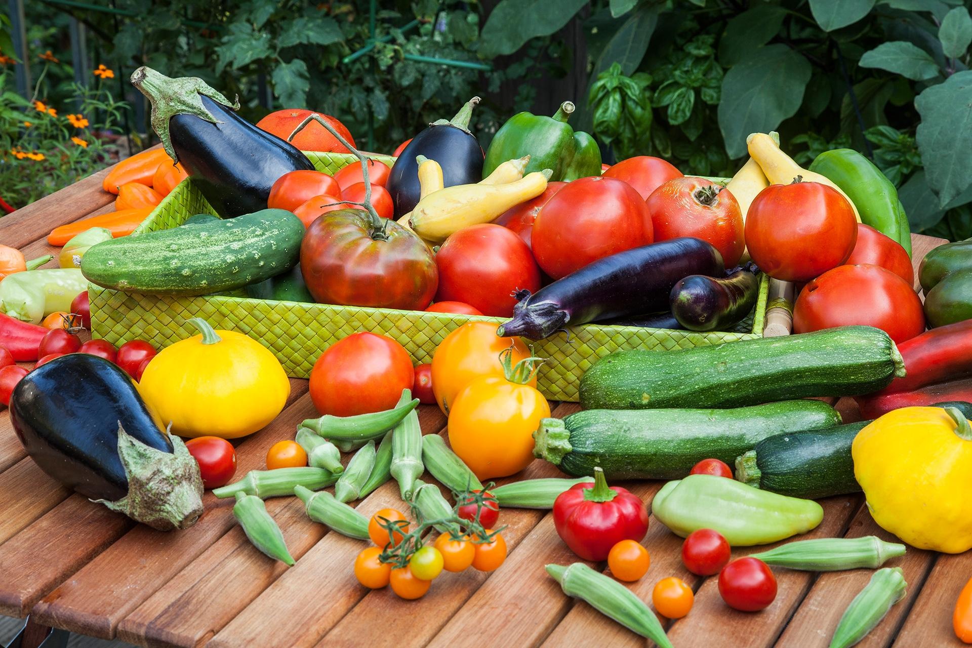 Клас за летни свежи аюрведични рецепти