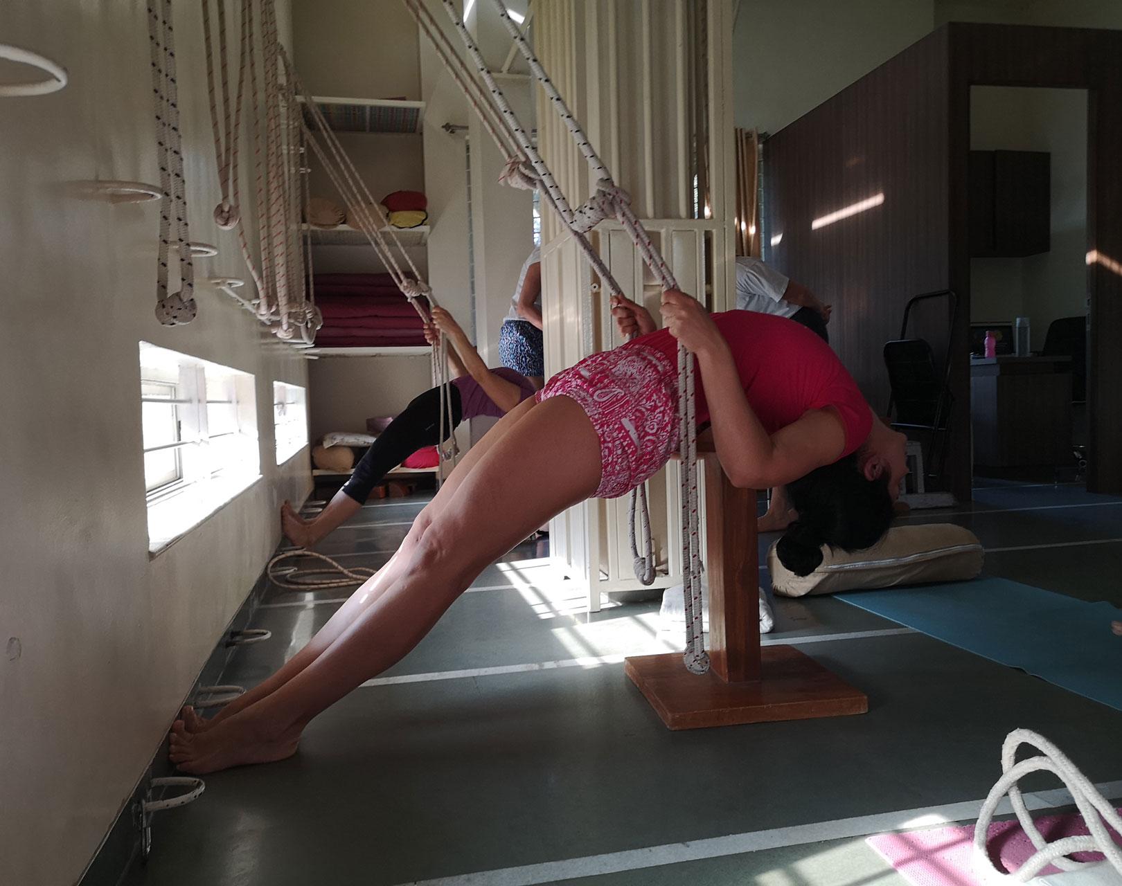 Групи асани, изучавани в Айенгар йога