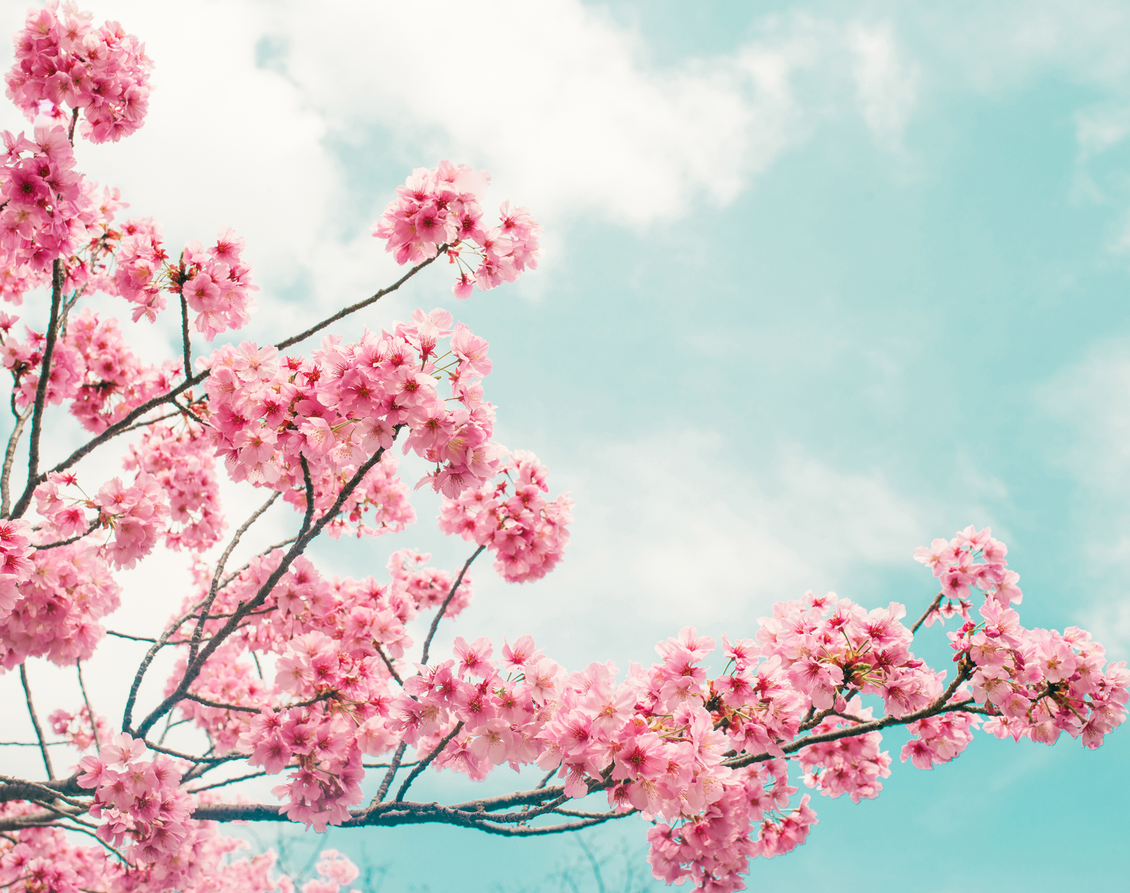 Пролетен детокс ритрийт