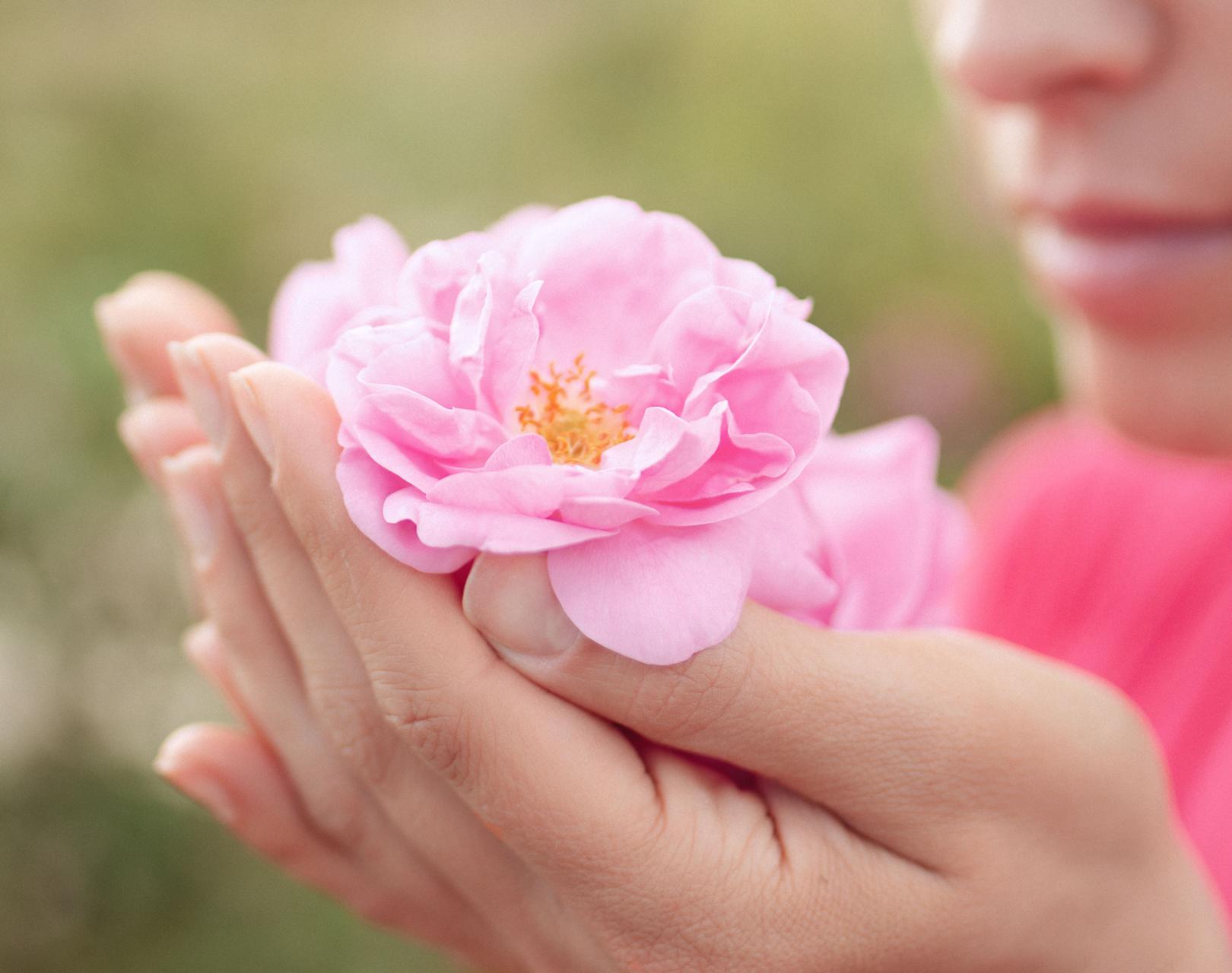 Женски розов ритрийт