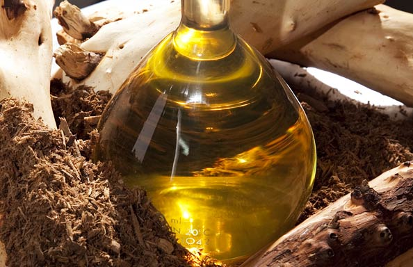Как да се насладим на ползите от сандаловото дърво?